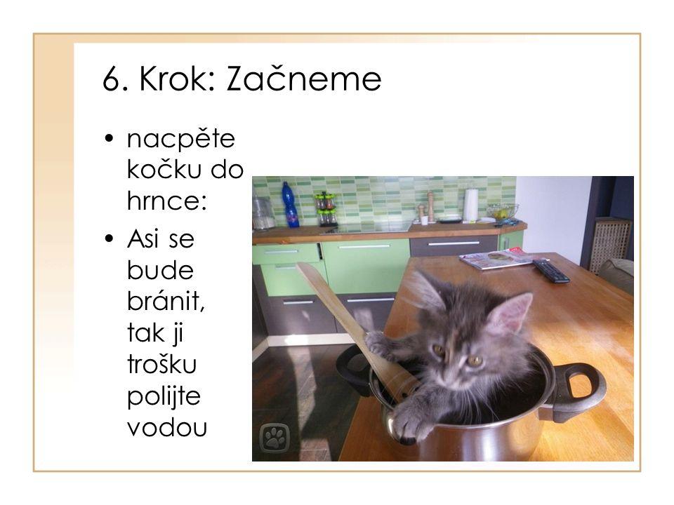 6. Krok: Začneme nacpěte kočku do hrnce: Asi se bude bránit, tak ji trošku polijte vodou