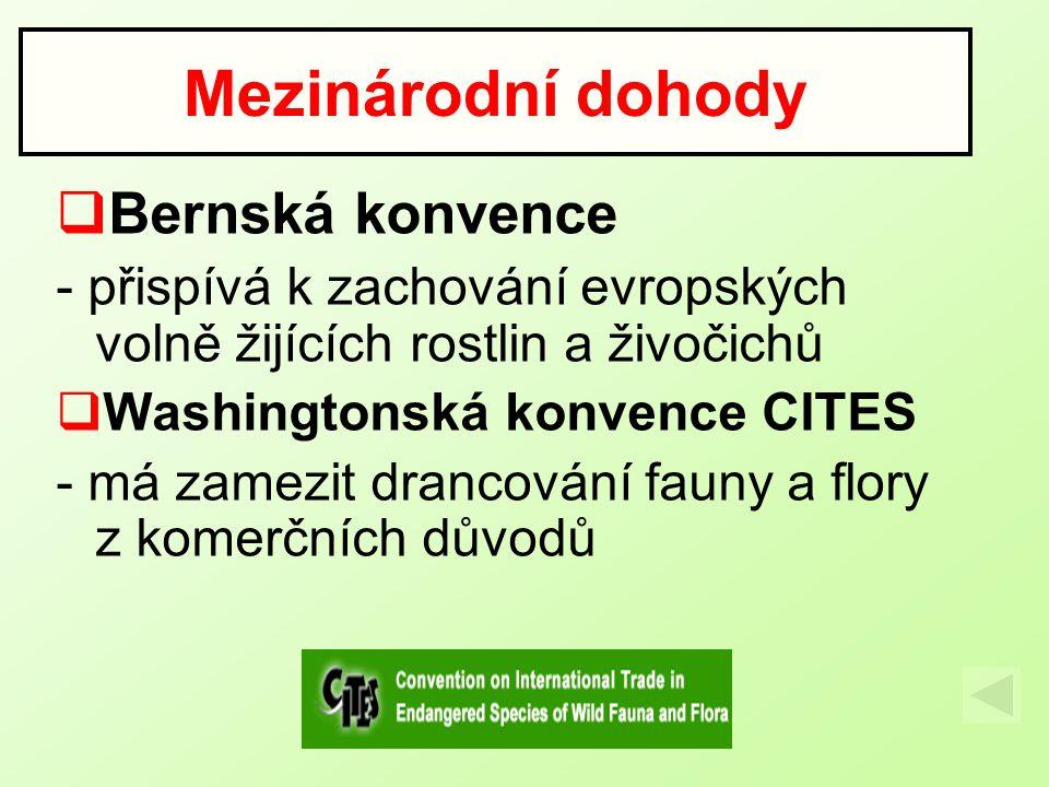  Bernská konvence - přispívá k zachování evropských volně žijících rostlin a živočichů  Washingtonská konvence CITES - má zamezit drancování fauny a flory z komerčních důvodů Mezinárodní dohody