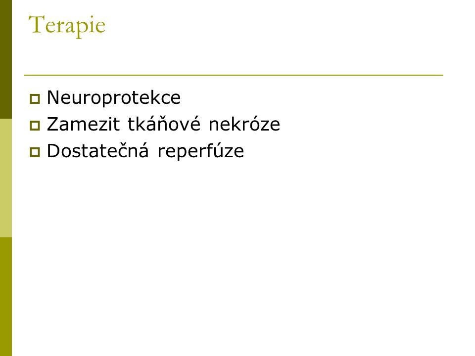 Terapie  Neuroprotekce  Zamezit tkáňové nekróze  Dostatečná reperfúze