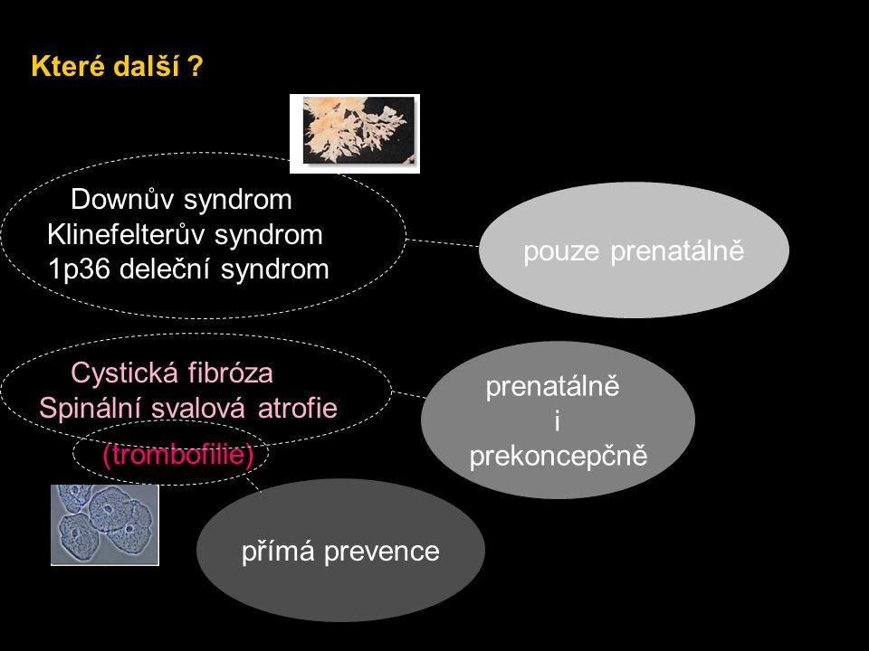 Které další ? Downův syndrom Klinefelterův syndrom 1p36 deleční syndrom Cystická fibróza Spinální svalová atrofie (trombofilie) pouze prenatálně prena