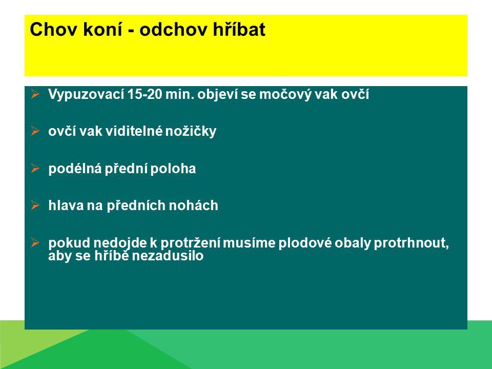 Zdroje: www.zvire.cz www.fitmin.cz www.eamos.pf.jcu.cz