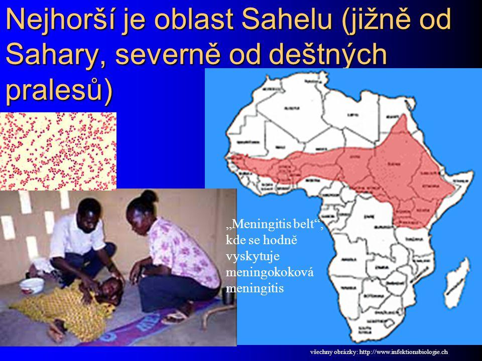 """Nejhorší je oblast Sahelu (jižně od Sahary, severně od deštných pralesů) """"Meningitis belt"""", kde se hodně vyskytuje meningokoková meningitis všechny ob"""