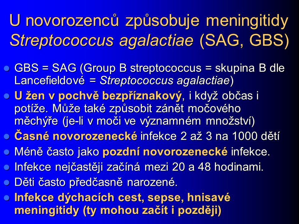U novorozenců způsobuje meningitidy Streptococcus agalactiae (SAG, GBS) GBS = SAG (Group B streptococcus = skupina B dle Lancefieldové = Streptococcus