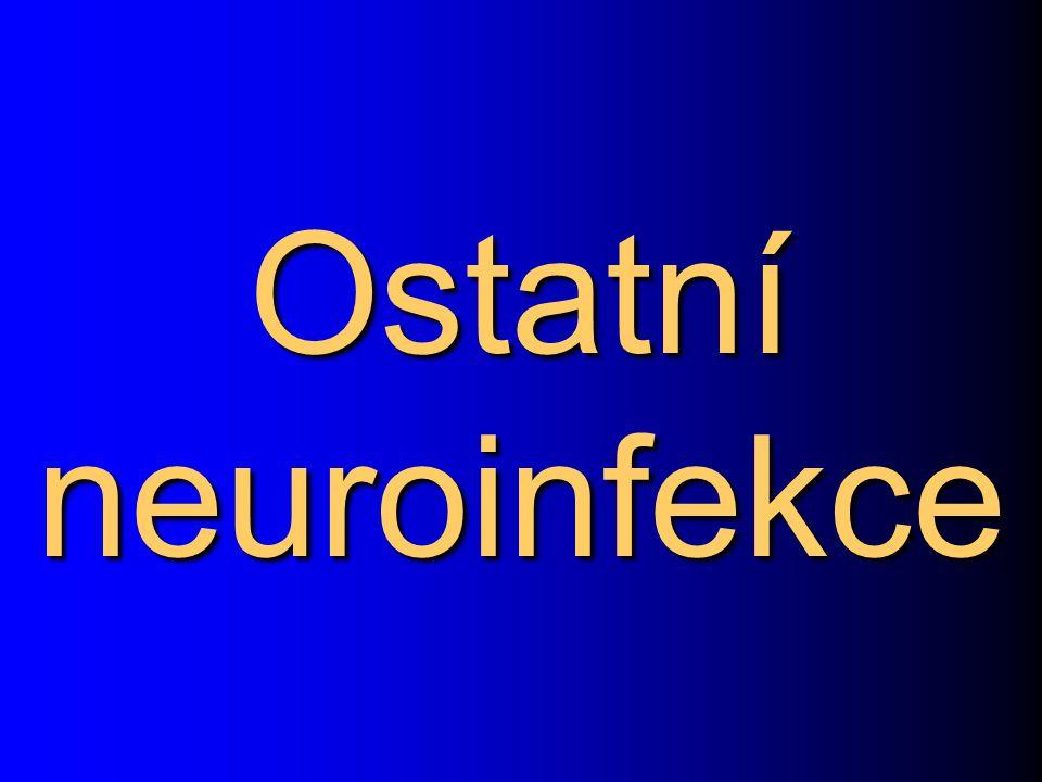 Ostatní neuroinfekce