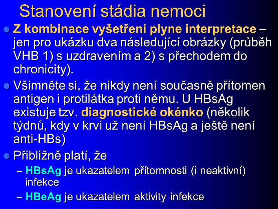 Stanovení stádia nemoci Z kombinace vyšetření plyne interpretace – jen pro ukázku dva následující obrázky (průběh VHB 1) s uzdravením a 2) s přechodem