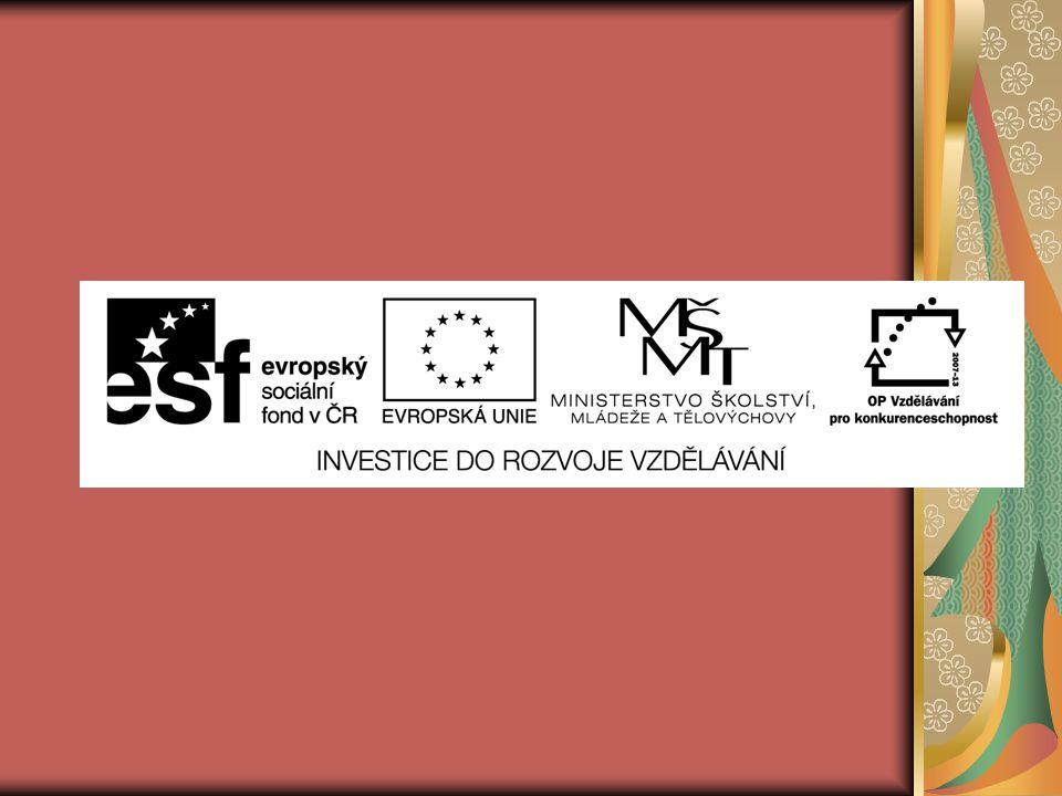 EU ICT2/1/1/14 Člověk a svět práce – 4.,5.
