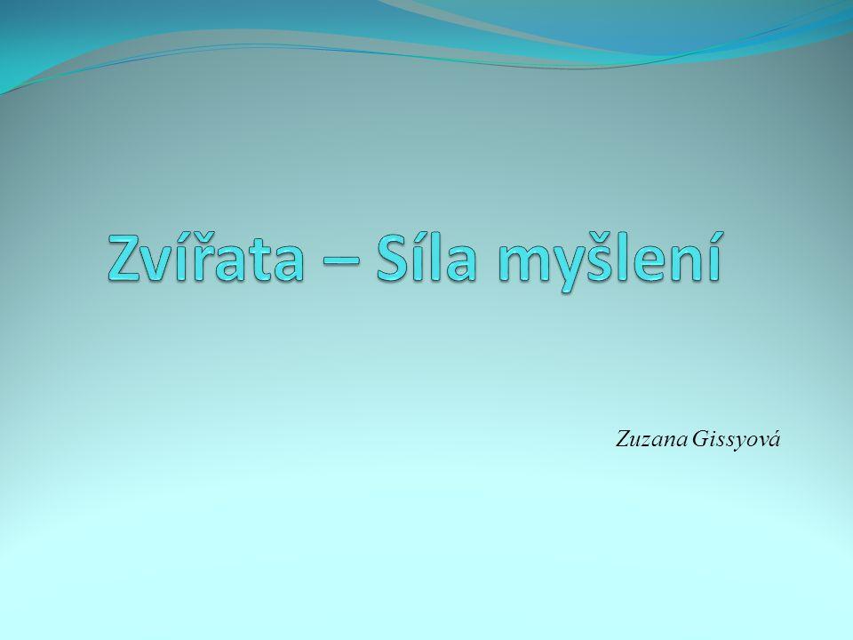 Zuzana Gissyová