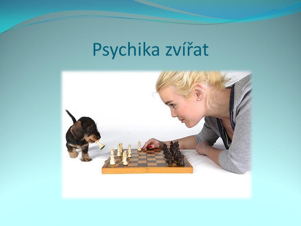 Psychika zvířat