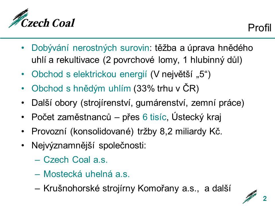 Profil Dobývání nerostných surovin: těžba a úprava hnědého uhlí a rekultivace (2 povrchové lomy, 1 hlubinný důl) Obchod s elektrickou energií (V nejvě