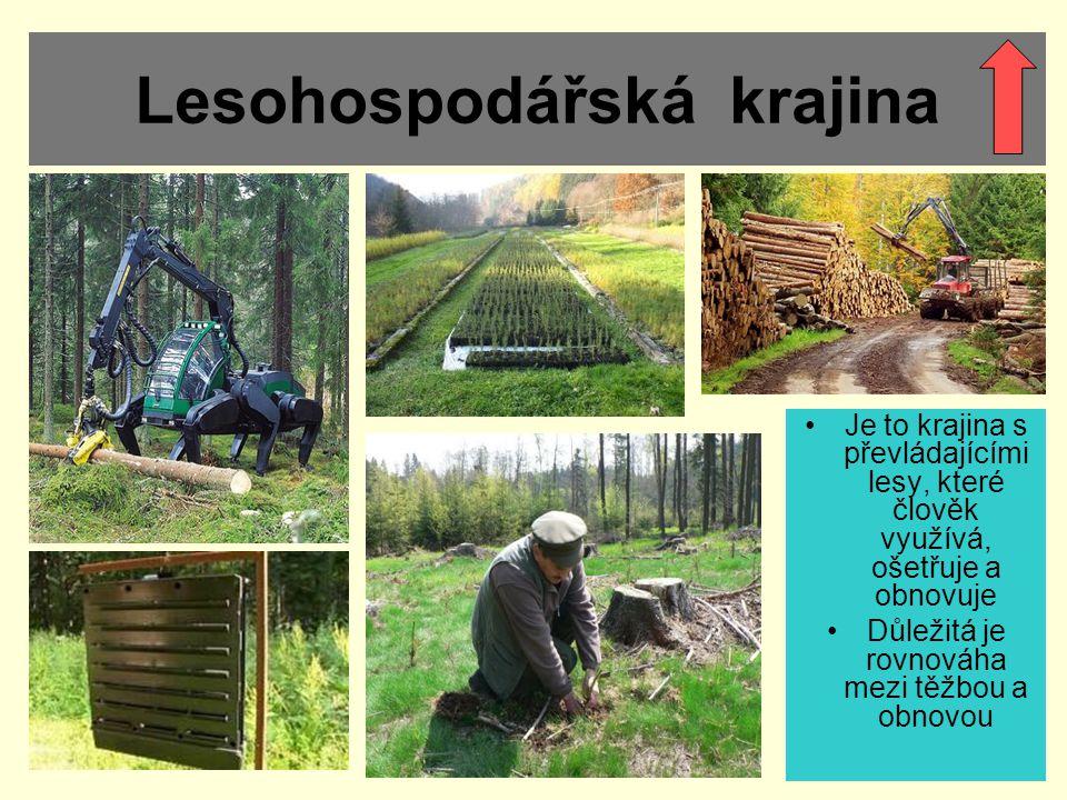 Lesohospodářská krajina Je to krajina s převládajícími lesy, které člověk využívá, ošetřuje a obnovuje Důležitá je rovnováha mezi těžbou a obnovou