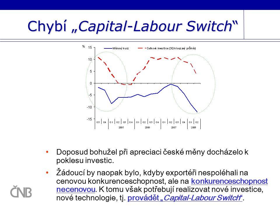 """Chybí """"Capital-Labour Switch Doposud bohužel při apreciaci české měny docházelo k poklesu investic."""