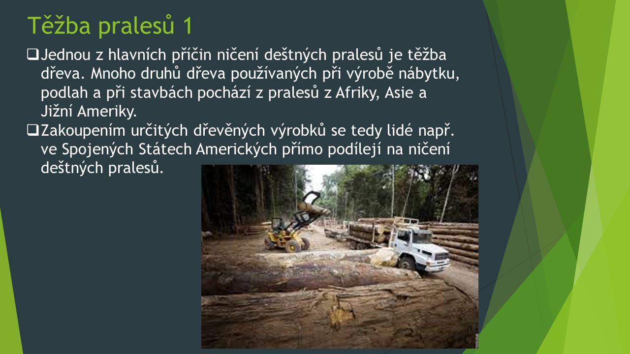 Těžba pralesů 1  Jednou z hlavních příčin ničení deštných pralesů je těžba dřeva. Mnoho druhů dřeva používaných při výrobě nábytku, podlah a při stav