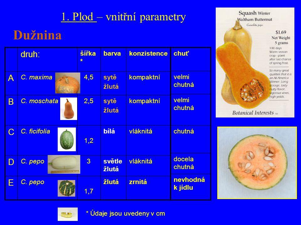 druh: šířka * barvakonzistence A C. maxima4,5sytě žlutá kompaktní B C. moschata2,5sytě žlutá kompaktní C C. ficifolia 1,2 bílávláknitá D C. pepo3světl