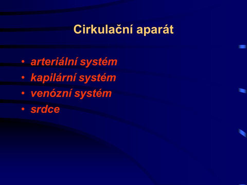 Cirkulační aparát arteriální systém kapilární systém venózní systém srdce