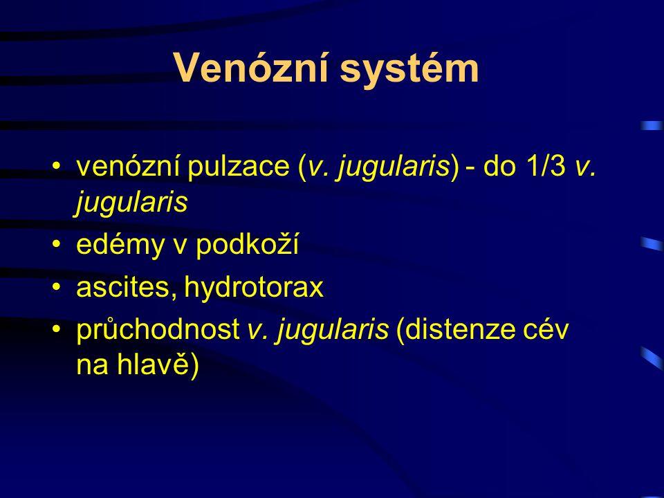 Venózní systém venózní pulzace (v. jugularis) - do 1/3 v. jugularis edémy v podkoží ascites, hydrotorax průchodnost v. jugularis (distenze cév na hlav