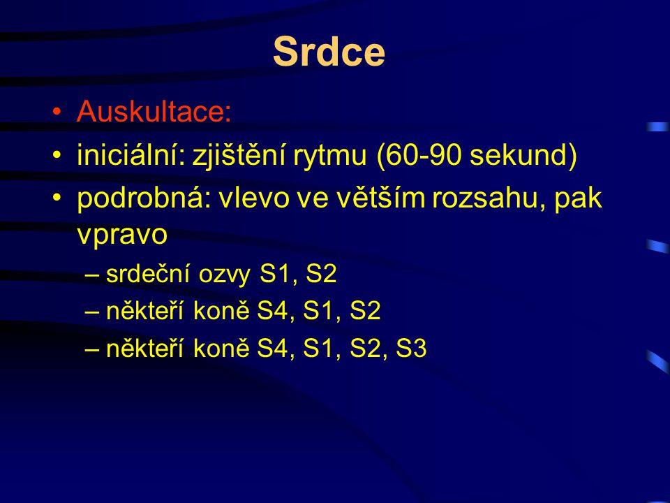 Srdce Auskultace: iniciální: zjištění rytmu (60-90 sekund) podrobná: vlevo ve větším rozsahu, pak vpravo –srdeční ozvy S1, S2 –někteří koně S4, S1, S2