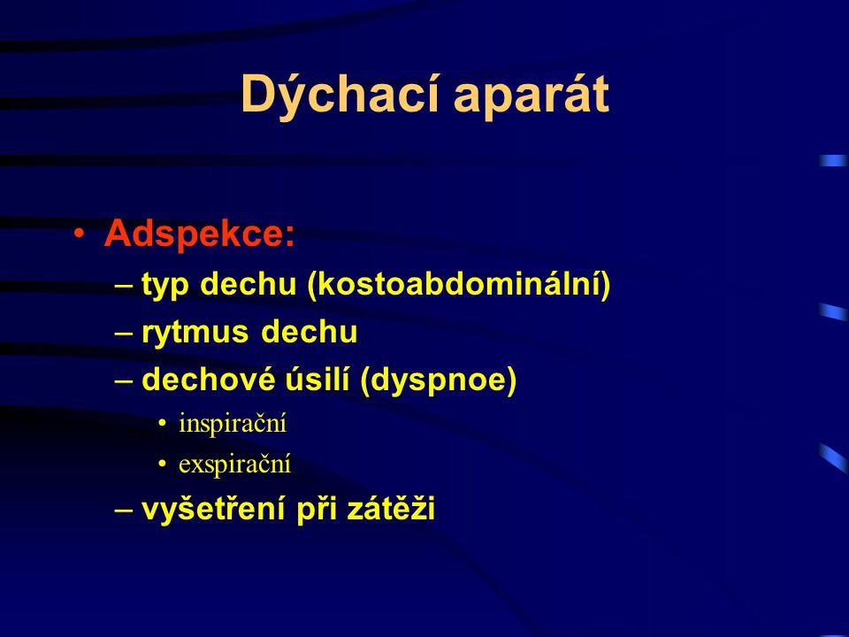 Dýchací aparát Adspekce: –typ dechu (kostoabdominální) –rytmus dechu –dechové úsilí (dyspnoe) inspirační exspirační –vyšetření při zátěži