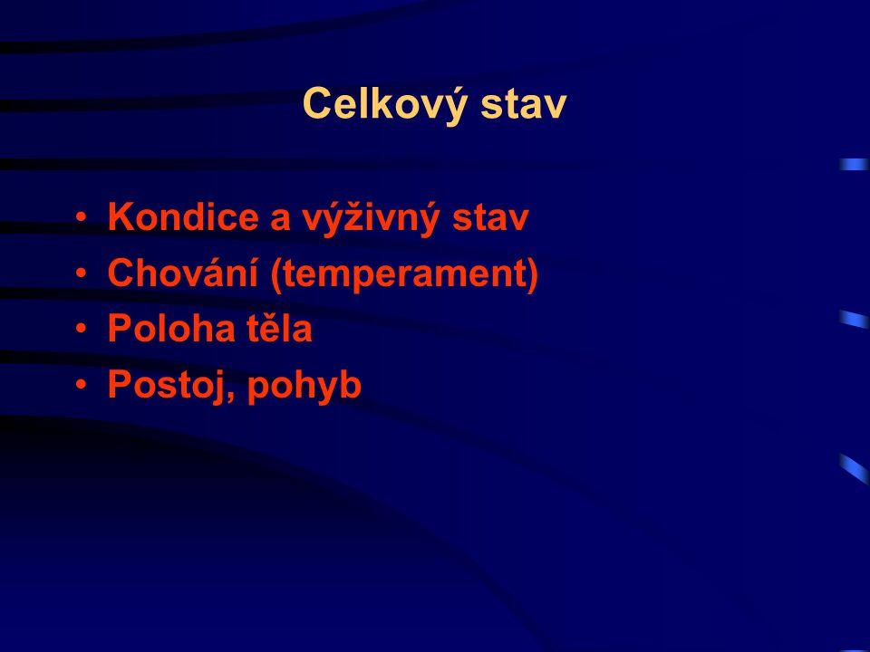 Venózní systém venózní pulzace (v.jugularis) - do 1/3 v.
