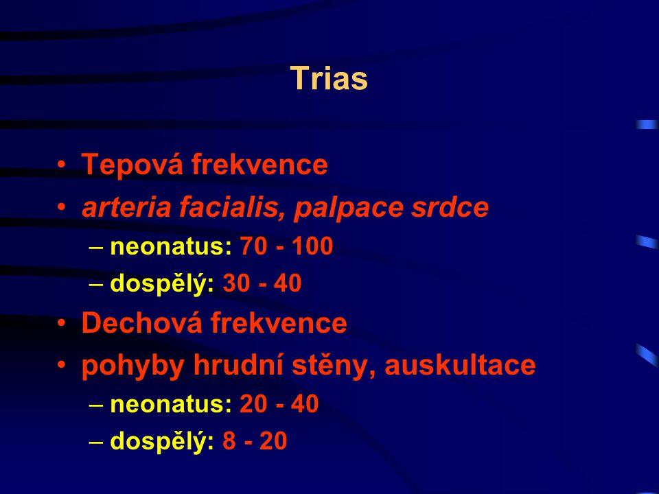 Vyšetření kraniálních nervů Faciální symetrie - VII (facialis) Sluch, rovnováha - VIII (statoacusticus) Polykání - IX, X (glossopharynfeus, vagus) Pohyby jazyka - XII (hypoglossus)