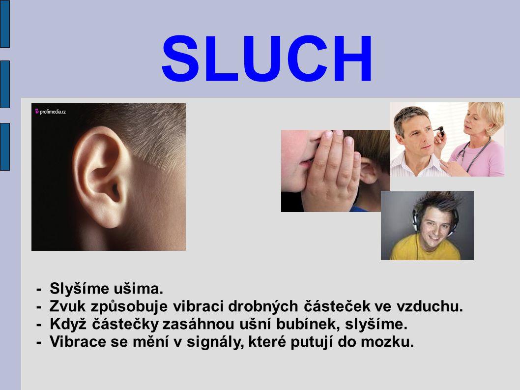 SLUCH - Slyšíme ušima. - Zvuk způsobuje vibraci drobných částeček ve vzduchu. - Když částečky zasáhnou ušní bubínek, slyšíme. - Vibrace se mění v sign