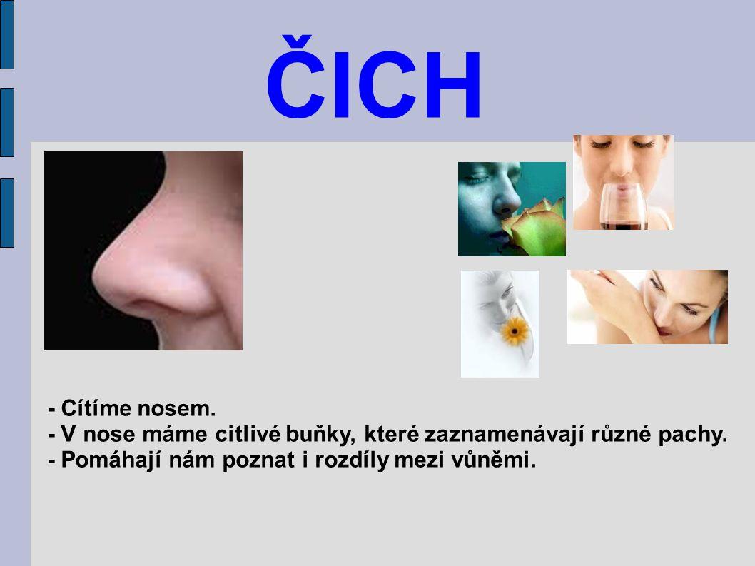 ČICH - Cítíme nosem. - V nose máme citlivé buňky, které zaznamenávají různé pachy. - Pomáhají nám poznat i rozdíly mezi vůněmi.