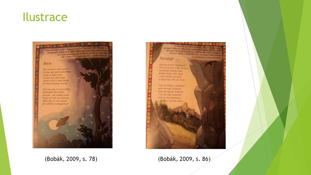 Ilustrace (Bobák, 2009, s. 86) (Bobák, 2009, s. 78)