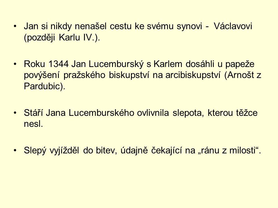 Jan si nikdy nenašel cestu ke svému synovi - Václavovi (později Karlu IV.). Roku 1344 Jan Lucemburský s Karlem dosáhli u papeže povýšení pražského bis