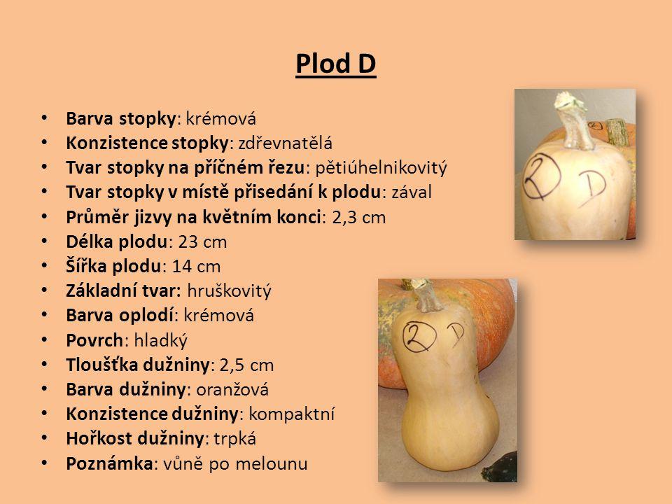 Plod D Barva stopky: krémová Konzistence stopky: zdřevnatělá Tvar stopky na příčném řezu: pětiúhelnikovitý Tvar stopky v místě přisedání k plodu: záva