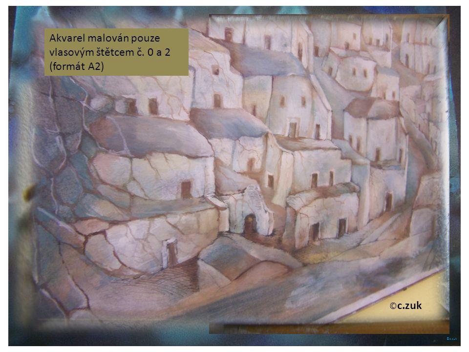 ©c.zuk Archiv autora Akvarel je náchylný na vlhko, je dobré obrazy nalakovat Archiv autora © c.zuk Archiv autora Štětce je užitečné chránit, často mají akvarelové štětce velmi jemný vlas.