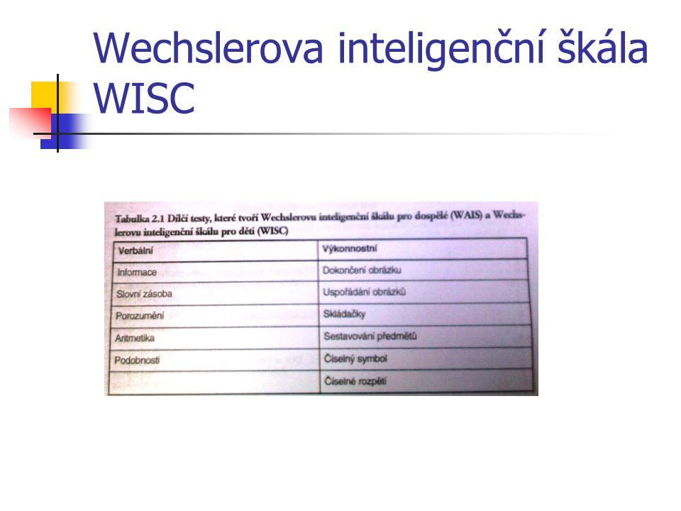 Wechslerova inteligenční škála WISC