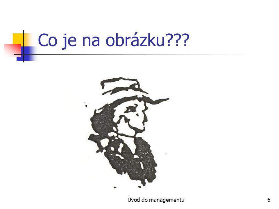 Úvod do managementu17 Individuální brainstorming Postup: napíšeme téma brainstormingu.
