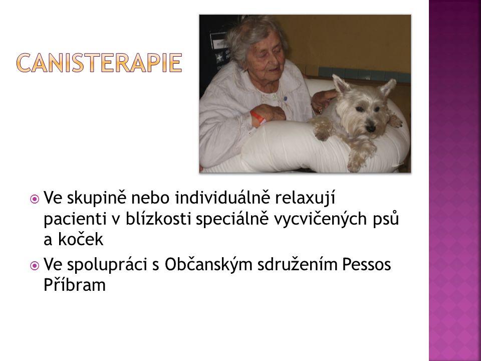  Ve skupině nebo individuálně relaxují pacienti v blízkosti speciálně vycvičených psů a koček  Ve spolupráci s Občanským sdružením Pessos Příbram