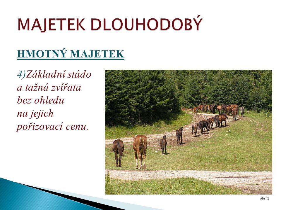 HMOTNÝ MAJETEK 4)Základní stádo a tažná zvířata bez ohledu na jejich pořizovací cenu. obr. 1