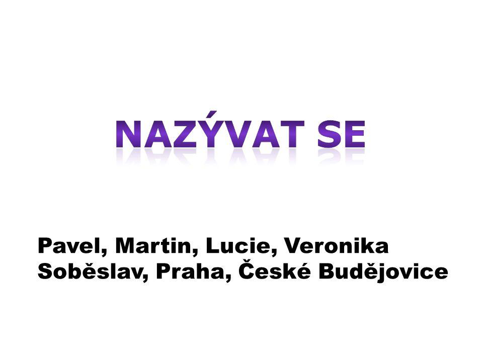 Pavel, Martin, Lucie, Veronika Soběslav, Praha, České Budějovice