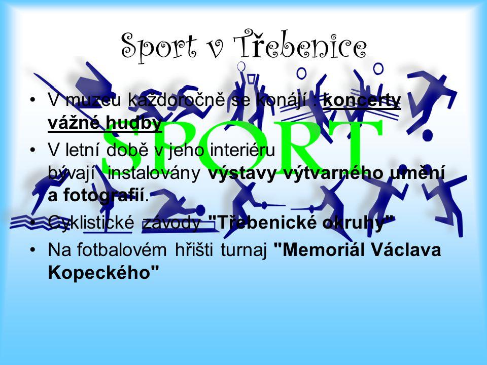 Kulturní akce města Poslední měsíc roku 2012 v Třebenicích byl naplněn kulturními akcemi.
