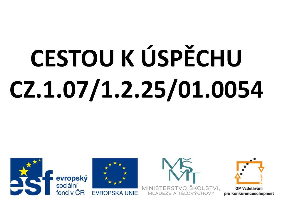 CESTOU K ÚSPĚCHU CZ.1.07/1.2.25/01.0054