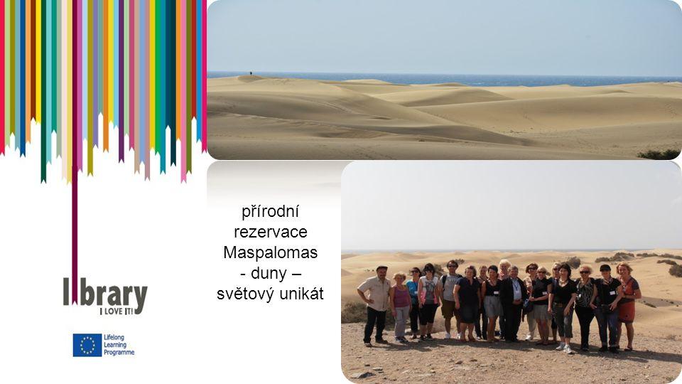 přírodní rezervace Maspalomas - duny – světový unikát