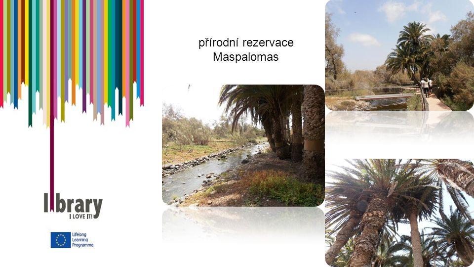 přírodní rezervace Maspalomas