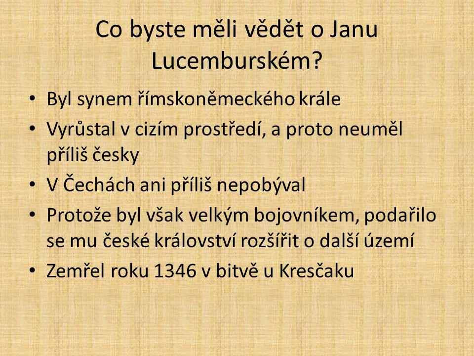 Co byste měli vědět o Janu Lucemburském.
