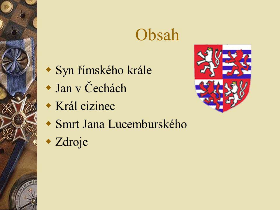 Obsah  Syn římského krále  Jan v Čechách  Král cizinec  Smrt Jana Lucemburského  Zdroje