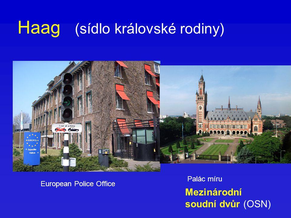 Haag (sídlo královské rodiny) Palác míru Mezinárodní soudní dvůr (OSN) European Police Office