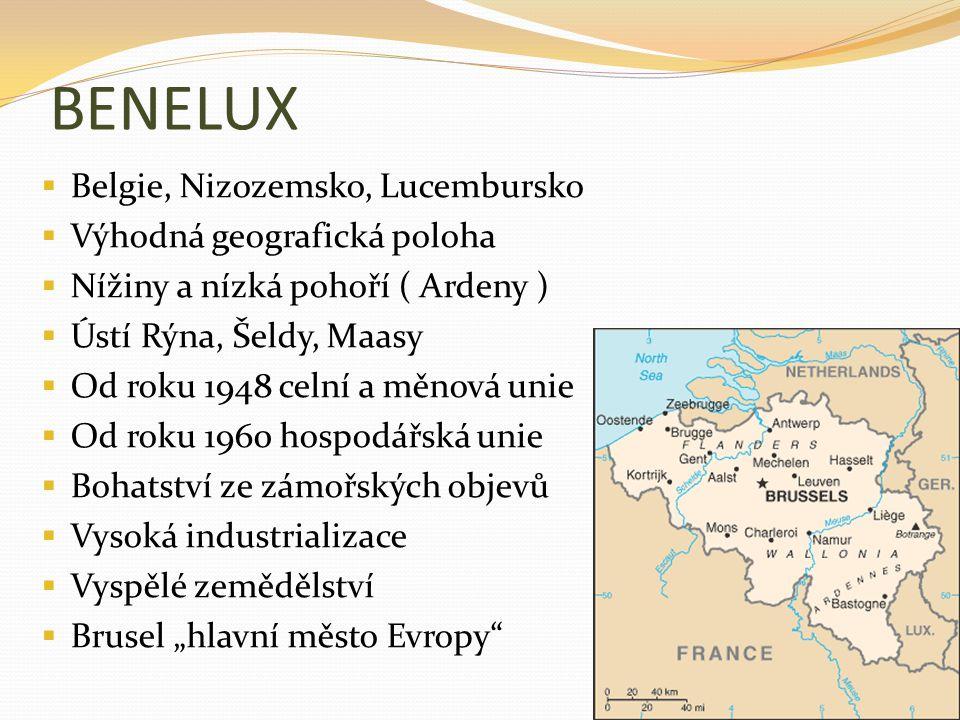 BENELUX  Belgie, Nizozemsko, Lucembursko  Výhodná geografická poloha  Nížiny a nízká pohoří ( Ardeny )  Ústí Rýna, Šeldy, Maasy  Od roku 1948 cel