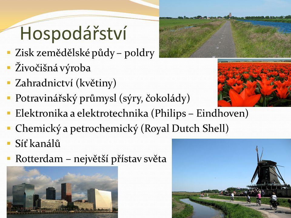 Hospodářství  Zisk zemědělské půdy – poldry  Živočišná výroba  Zahradnictví (květiny)  Potravinářský průmysl (sýry, čokolády)  Elektronika a elek