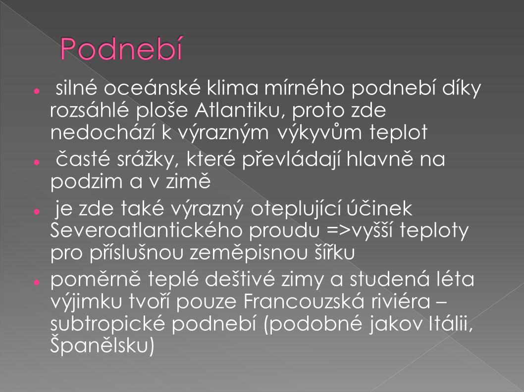  google.com  Seznam.cz  Unium.cz  Wikipedia.cz  Zemepis.com
