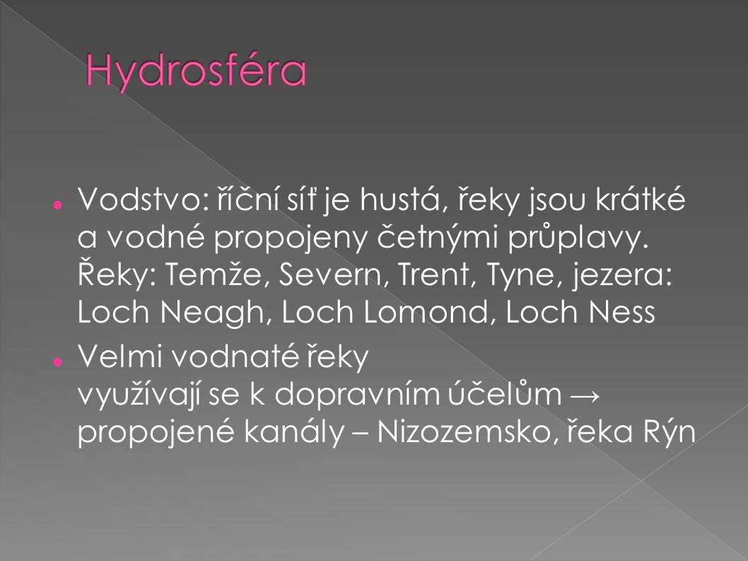  Děkujeme za pozornost  Víla Gerty-Dorty Babiška, Víla Pošahanka, Víla Brejlounka, Víla Bagetka a dva další Víláci – Onďa a Viktor