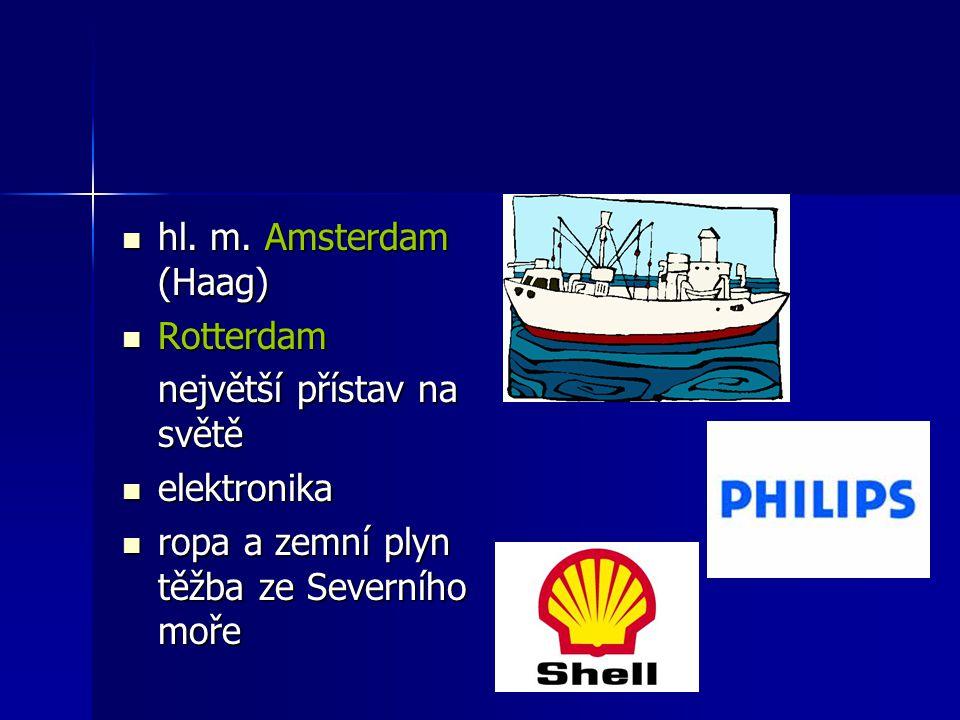 hl. m. Amsterdam (Haag) hl. m. Amsterdam (Haag) Rotterdam Rotterdam největší přístav na světě elektronika elektronika ropa a zemní plyn těžba ze Sever