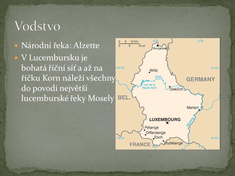 Národní řeka: Alzette V Lucembursku je bohatá říční síť a až na říčku Korn náleží všechny do povodí největší lucemburské řeky Mosely