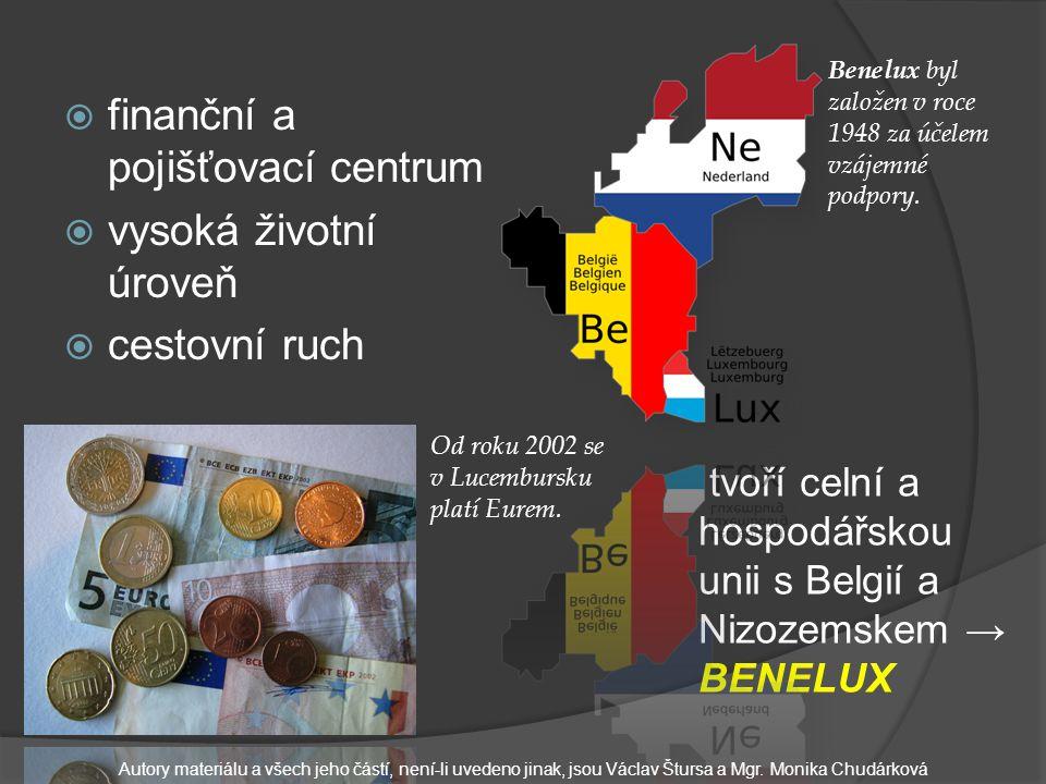  finanční a pojišťovací centrum  vysoká životní úroveň  cestovní ruch Od roku 2002 se v Lucembursku platí Eurem.