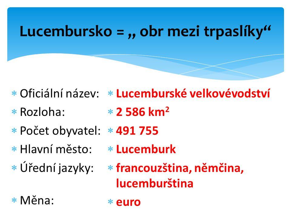 """Lucembursko = """" obr mezi trpaslíky  Oficiální název:  Rozloha:  Počet obyvatel:  Hlavní město:  Úřední jazyky:  Měna:  Lucemburské velkovévodství  2 586 km 2  491 755  Lucemburk  francouzština, němčina, lucemburština  euro"""