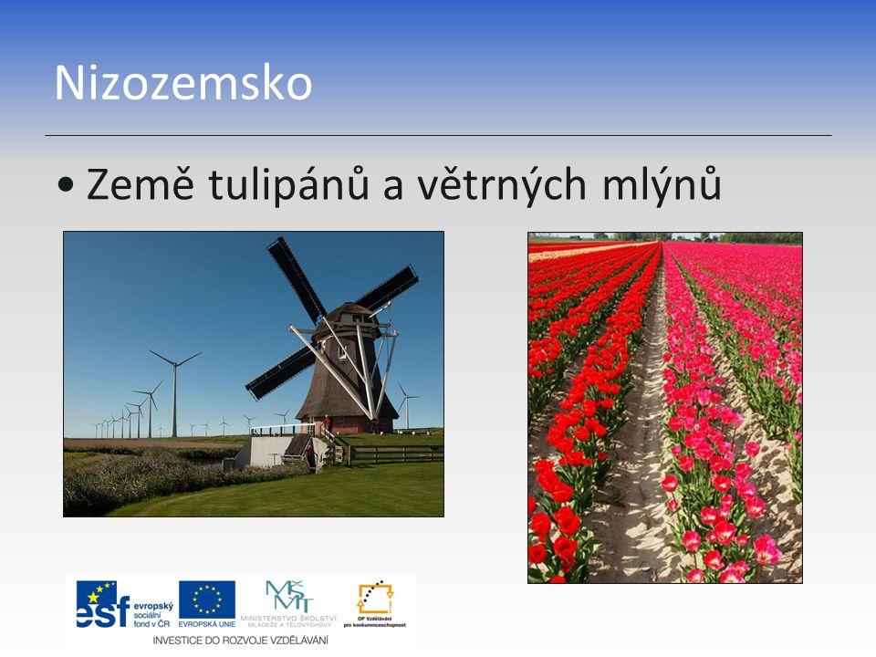 Nizozemsko Země tulipánů a větrných mlýnů